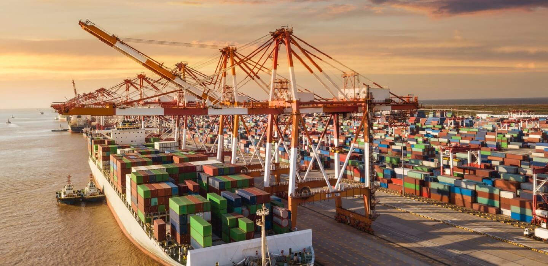 Exportamos a 12 países